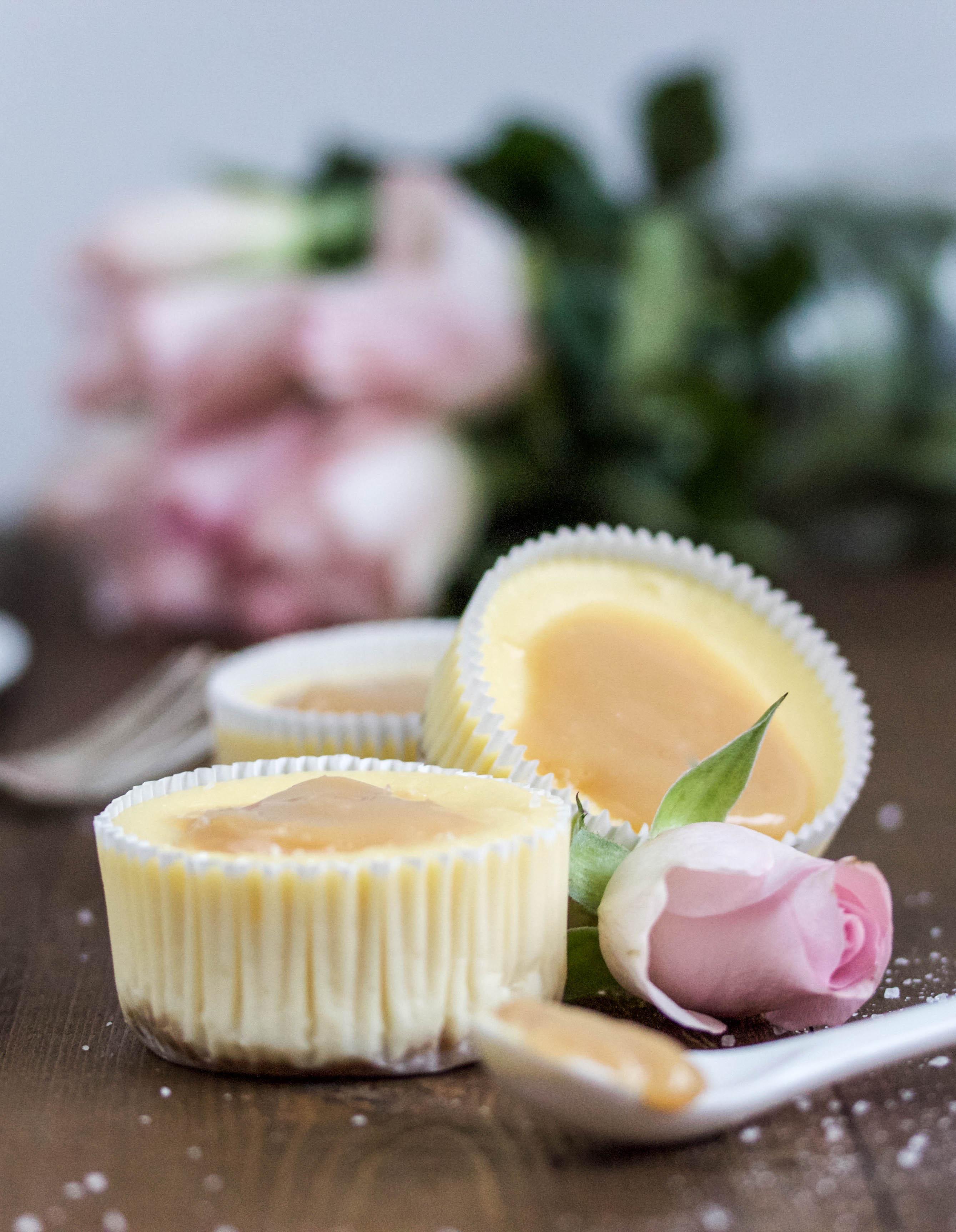 Einfaches Rezept für Dulche de Leiche Cheesecakes Salzkaramell Salted Karamell #muffins #cheesecake #muffins #caramell