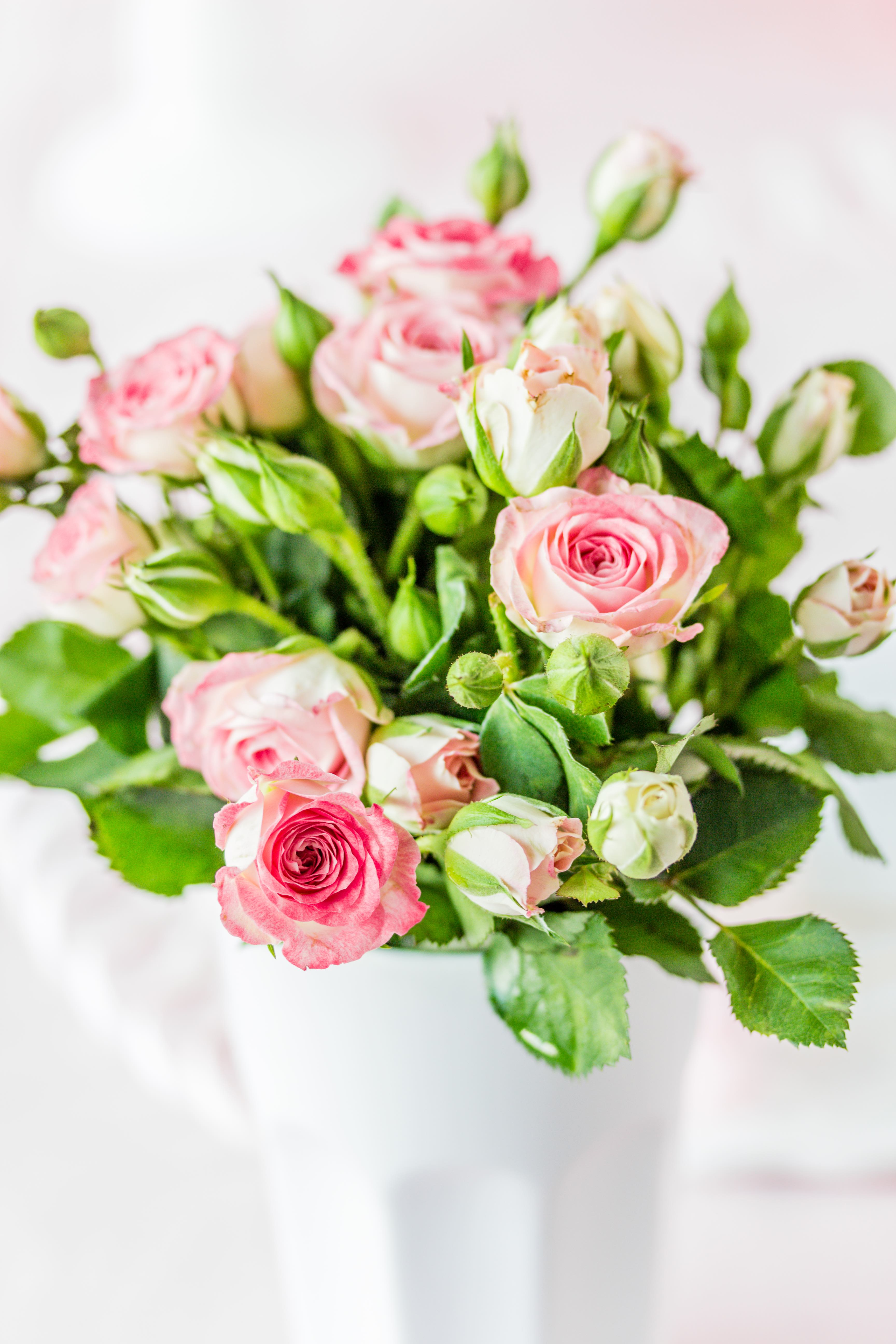 Rosa Mädchen Torte Rezept Geburtstag backen Drip Cake Ballerina #Torte #backen #dripcake #ballerina #cake | Emma´s Lieblingsstücke