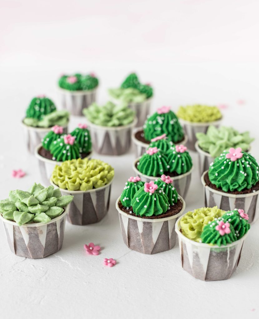 Sukkulenten Cupcakes aus Tropical Party Backbuch Sommer Ananas Wassermelone Ananas Kaktus #Ananas #Kaktus #tropical #backbuch #backen #tropicalparty | Emma´s Lieblingsstücke