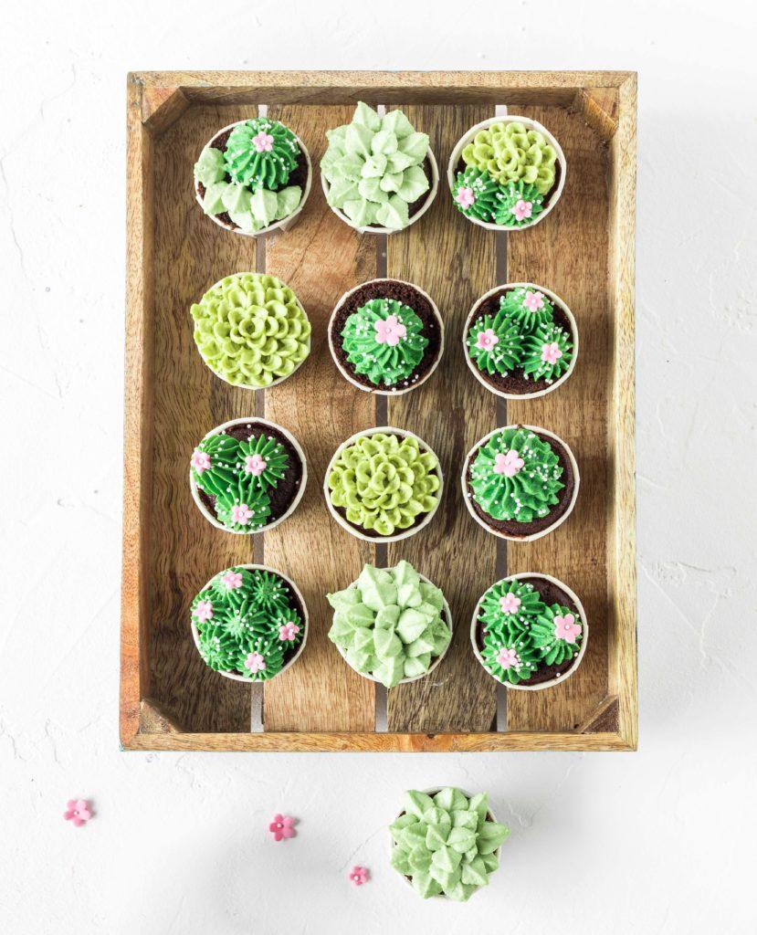 Sukkulenten Cupcakes aus Tropical Party Backbuch Sommer Ananas Wassermelone Ananas Kaktus #Ananas #Kaktus #tropical #backbuch #backen #tropicalparty   Emma´s Lieblingsstücke