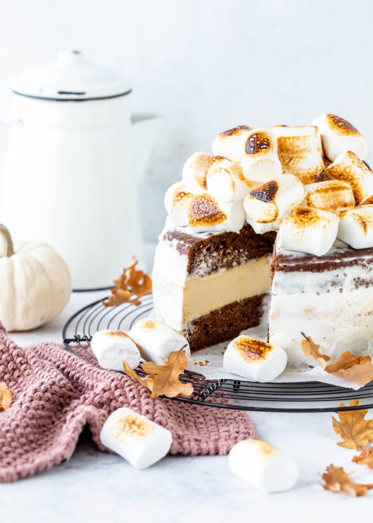 Kürbis S´mores Cheesecake Torte Marshmallow Pumpkin Herbst Backen Rezept Käsekuchen